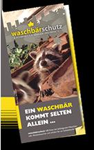 Infoflyer Waschbaerschutz